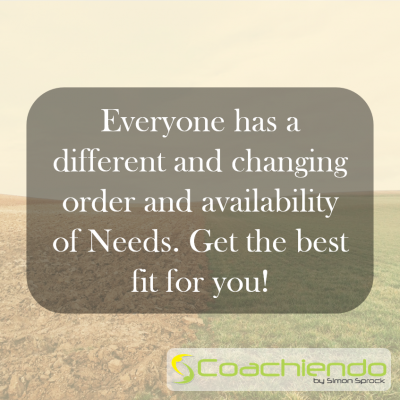Everyone has a different and changing order and availability of Needs. Get the best fit for you.