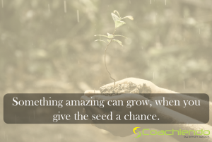 Something amazing can grow, when you give the seed a chance.