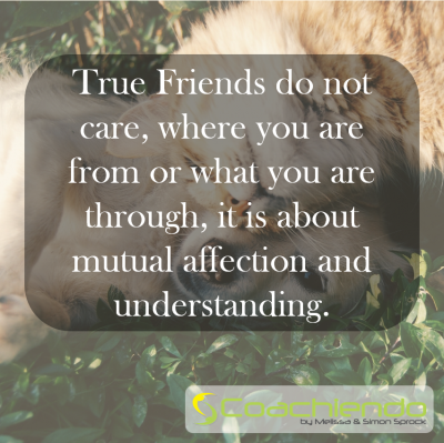 True Friends do not care, where you are from or what you are through, it is about mutual affection and understanding.